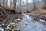 338 Cow Creek - Photo 5