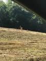 1105 Fox Creek-Goshen Road - Photo 7