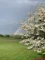 29 Rainbow Trace - Photo 40