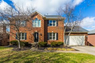 4109 Palmetto Drive, Lexington, KY 40513 (MLS #1702541) :: Nick Ratliff Realty Team