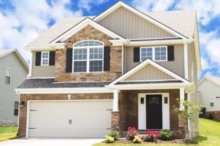558 Estrella Drive, Lexington, KY 40511 (MLS #1708602) :: Nick Ratliff Realty Team