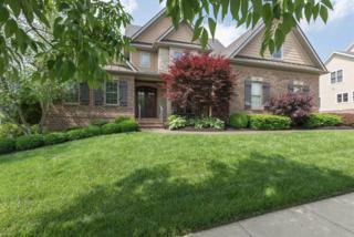 3860 Still Meadow Lane, Lexington, KY 40509 (MLS #1710347) :: Nick Ratliff Realty Team