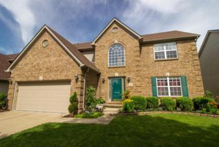 1149 Aldridge, Lexington, KY 40515 (MLS #1711243) :: Nick Ratliff Realty Team