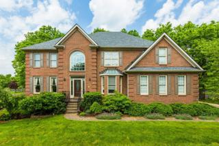 2349 Abbeywood Road, Lexington, KY 40515 (MLS #1711293) :: Nick Ratliff Realty Team