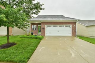 1057 Lucille Drive, Lexington, KY 40511 (MLS #1711649) :: Nick Ratliff Realty Team