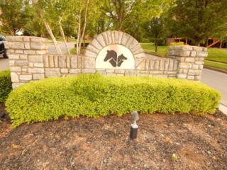 3360 Partridge Drive, Lexington, KY 40513 (MLS #1710463) :: Nick Ratliff Realty Team