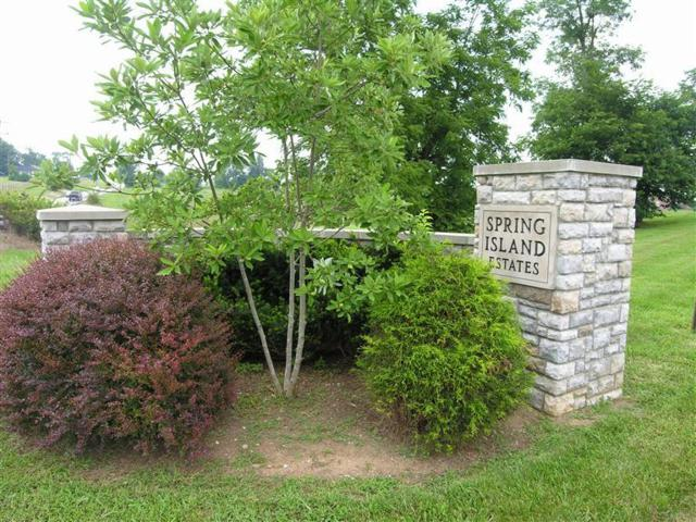 101 Spring Island Drive, Georgetown, KY 40324 (MLS #1417969) :: Nick Ratliff Realty Team