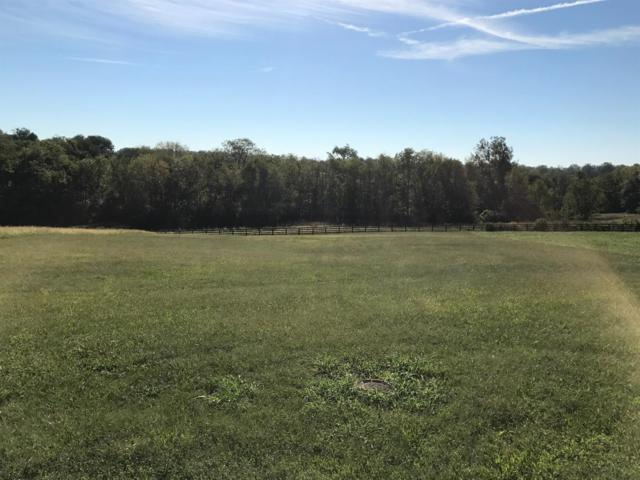 305 Terra Bianca, Nicholasville, KY 40356 (MLS #1621239) :: Nick Ratliff Realty Team