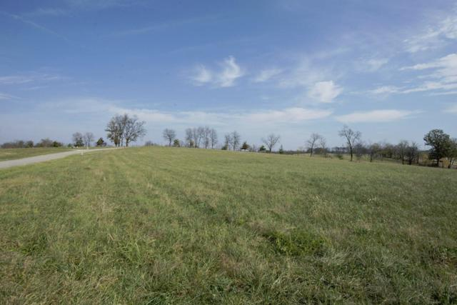 100 Big Sky Drive, Stamping Ground, KY 40379 (MLS #1623764) :: Nick Ratliff Realty Team