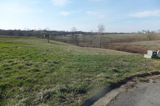305 Macedonian Court, Mt Sterling, KY 40353 (MLS #1705123) :: Nick Ratliff Realty Team