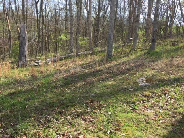 105 Wild Turkey Path, Georgetown, KY 40324 (MLS #1707996) :: Nick Ratliff Realty Team