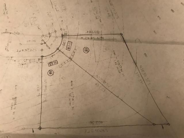 1119 Annadon Court, Richmond, KY 40475 (MLS #1712896) :: The Lane Team
