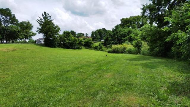 170 Lakeview Drive #171, Mt Sterling, KY 40353 (MLS #1714634) :: Sarahsold Inc.