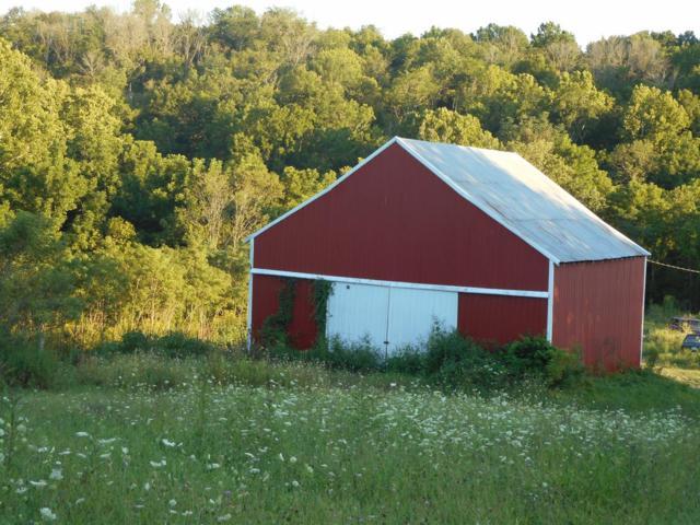 1 Swartz Lane Farm, Mt Olivet, KY 41064 (MLS #1719942) :: Nick Ratliff Realty Team