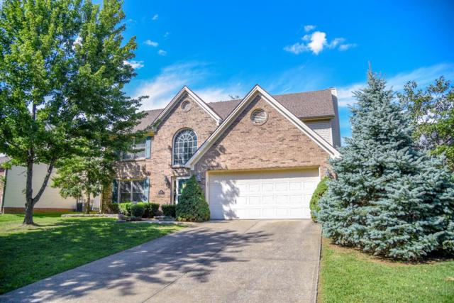 385 Whitfield Drive, Lexington, KY 40515 (MLS #1720167) :: Nick Ratliff Realty Team