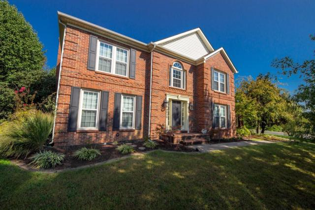 4656 Collinswood Drive, Lexington, KY 40515 (MLS #1722913) :: Nick Ratliff Realty Team