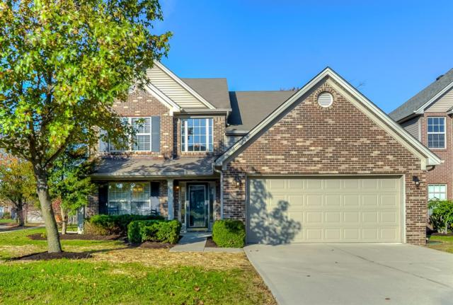801 White Wood Flat, Lexington, KY 40511 (MLS #1725501) :: Nick Ratliff Realty Team