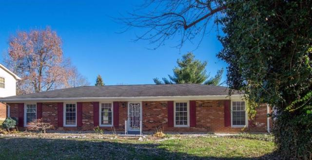 3169 Dale Hollow Drive, Lexington, KY 40515 (MLS #1725887) :: Nick Ratliff Realty Team