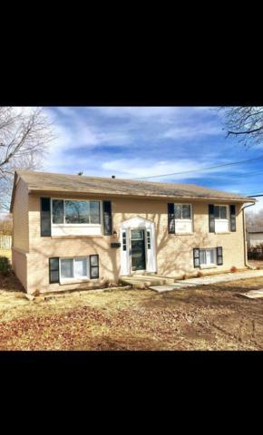339 Wilson Downing Road, Lexington, KY 40517 (MLS #1801816) :: Nick Ratliff Realty Team