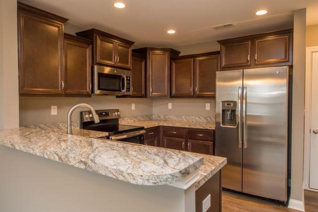 253 Black Water Lane, Lexington, KY 40511 (MLS #1803159) :: Nick Ratliff Realty Team
