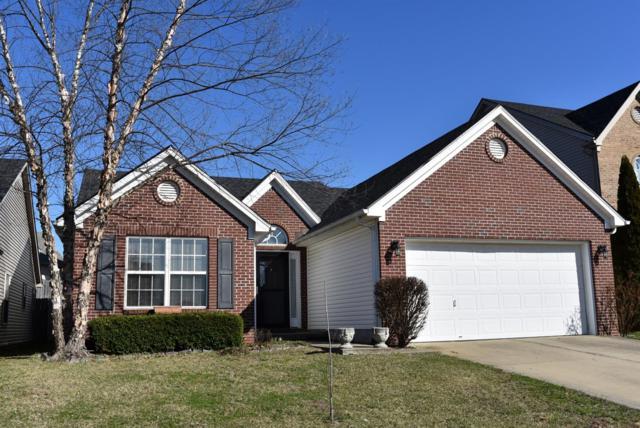 3816 Winthrop Drive, Lexington, KY 40514 (MLS #1803985) :: Nick Ratliff Realty Team
