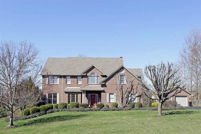 103 Labell Drive, Richmond, KY 40475 (MLS #1804019) :: Nick Ratliff Realty Team