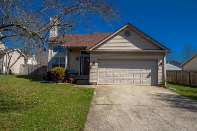 217 Southbrook Drive, Nicholasville, KY 40356 (MLS #1804311) :: Nick Ratliff Realty Team