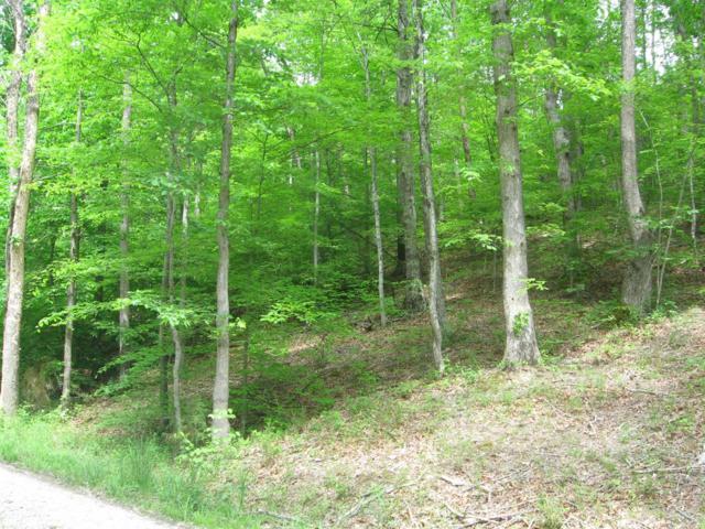 1 Beaver Creek Estates B, Stanton, KY 40380 (MLS #1806458) :: Nick Ratliff Realty Team