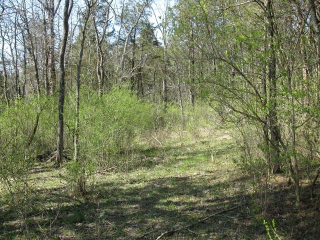 43 Woodhaven Way, Lawrenceburg, KY 40342 (MLS #1806831) :: Nick Ratliff Realty Team
