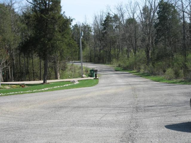 42 Woodhaven Way, Lawrenceburg, KY 40342 (MLS #1806842) :: Nick Ratliff Realty Team
