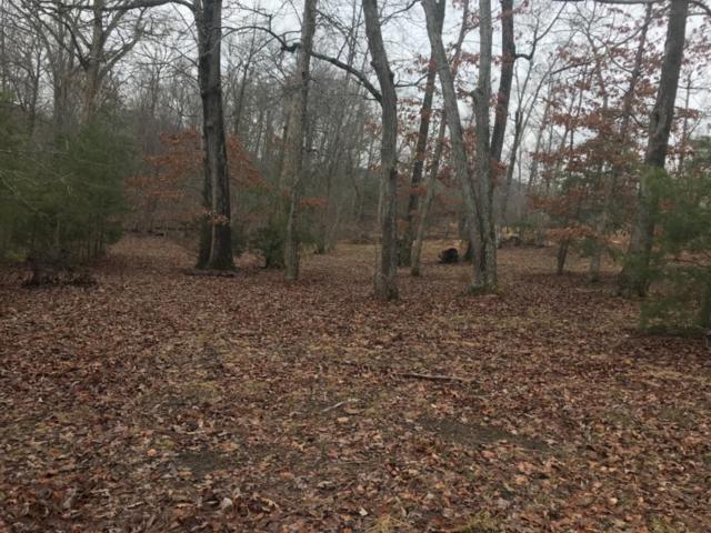 373 Forest Trail Drive, Berea, KY 40403 (MLS #1807953) :: Nick Ratliff Realty Team