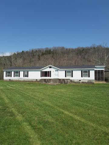1730 Lock 11 Road, Irvine, KY 40336 (MLS #1808286) :: The Lane Team