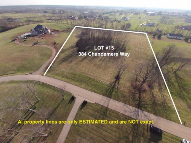 384 Chandamere Way, Nicholasville, KY 40356 (MLS #1809433) :: Gentry-Jackson & Associates