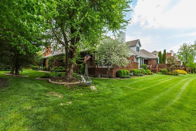 613 Golf Town Circle, Lexington, KY 40509 (MLS #1810154) :: Gentry-Jackson & Associates