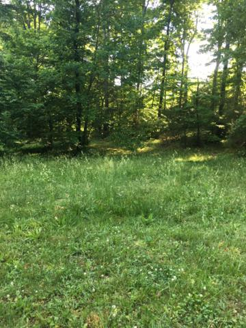 319 Woods Creek Drive, Somerset, KY 42503 (MLS #1811500) :: Nick Ratliff Realty Team