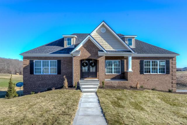 25 Palisades Point, Lancaster, KY 40444 (MLS #1812893) :: Nick Ratliff Realty Team