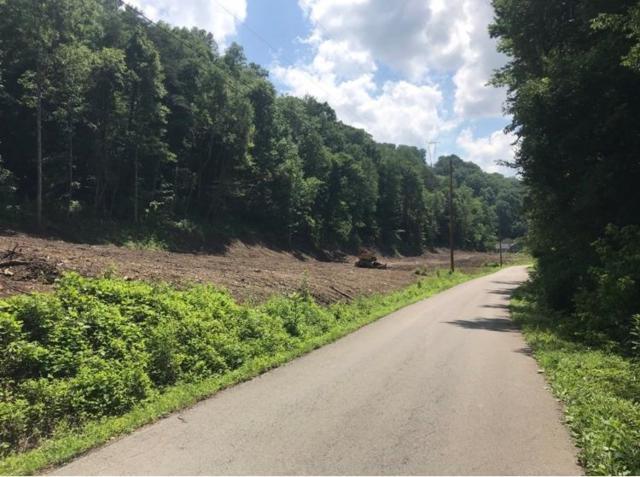 1800 Ratliff Creek Road, Pikeville, KY 41501 (MLS #1814792) :: Nick Ratliff Realty Team