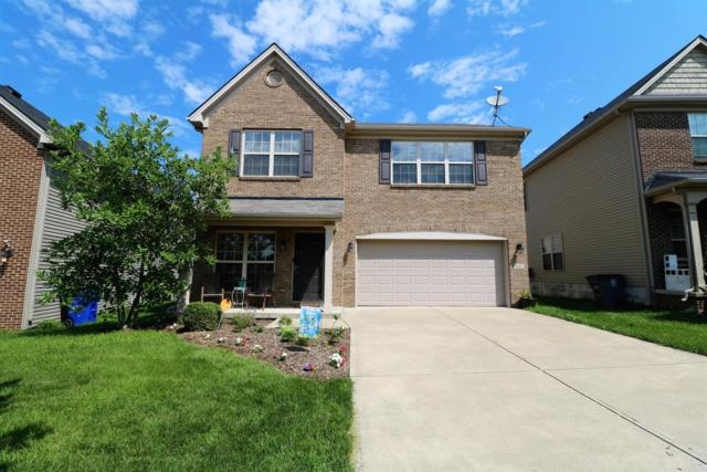 645 Cielo Vista Road, Lexington, KY 40511 (MLS #1815364) :: Nick Ratliff Realty Team