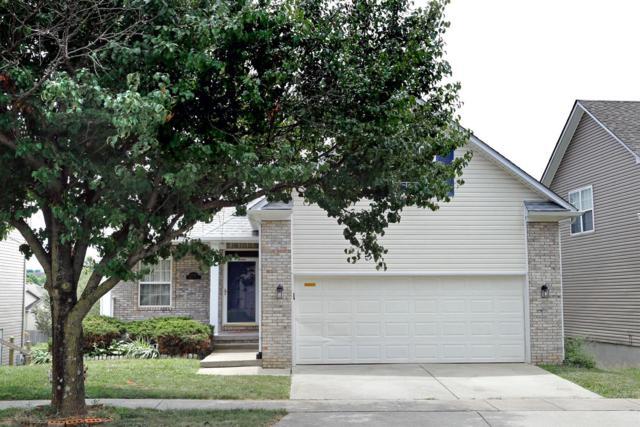 2728 Mable Lane, Lexington, KY 40511 (MLS #1816283) :: Nick Ratliff Realty Team