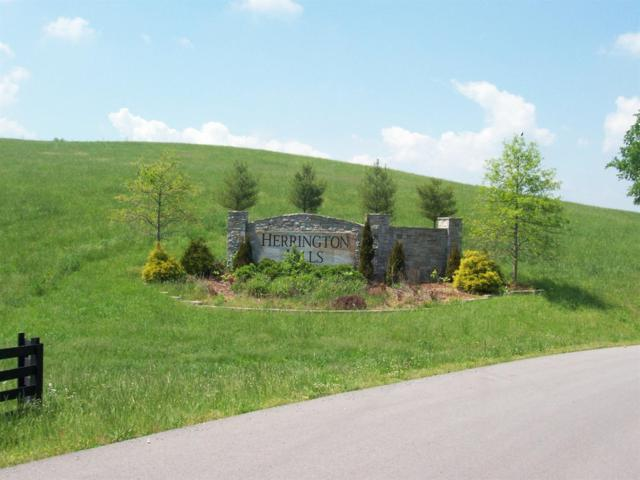 205 Lakeside, Lancaster, KY 40444 (MLS #1817581) :: Nick Ratliff Realty Team