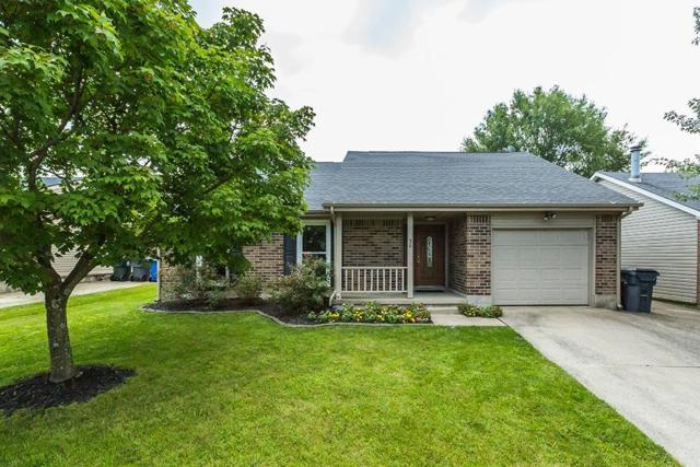 3436 Promenade Drive, Lexington, KY 40515 (MLS #1818596) :: Nick Ratliff Realty Team