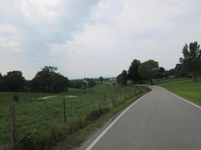 4220 Schollsville Road, Winchester, KY 40391 (MLS #1818949) :: Nick Ratliff Realty Team