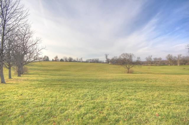 980 Chandamere Way, Nicholasville, KY 40356 (MLS #1819179) :: The Lane Team