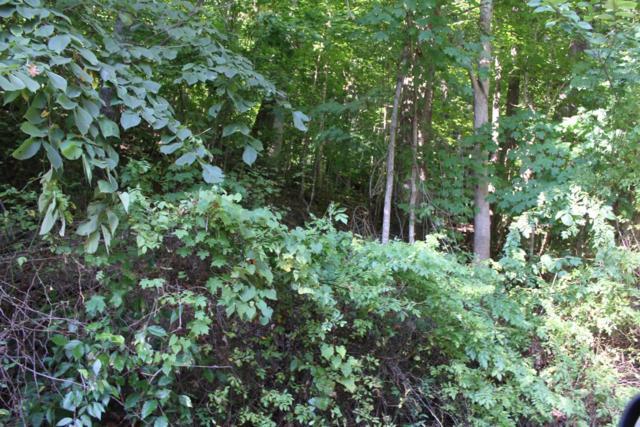 49 Sunny Acres Road, Harlan, KY 40831 (MLS #1819618) :: Sarahsold Inc.