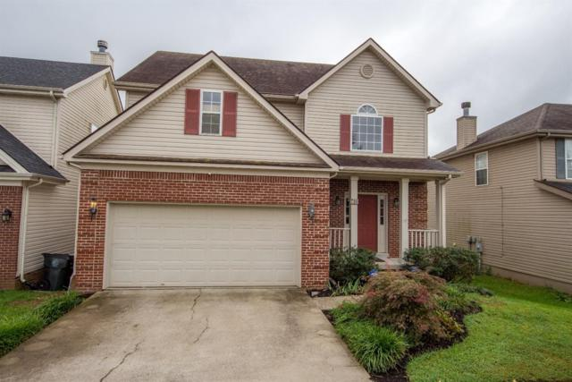 780 Vermillion Peak Pass, Lexington, KY 40515 (MLS #1820995) :: Sarahsold Inc.