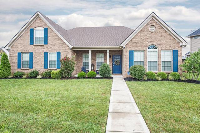 1731 Amethyst Way, Lexington, KY 40509 (MLS #1821043) :: Sarahsold Inc.