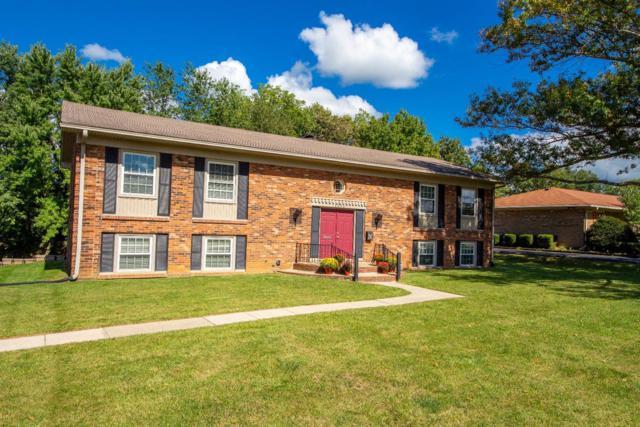 1605 Cantrill Drive, Lexington, KY 40505 (MLS #1821476) :: Sarahsold Inc.