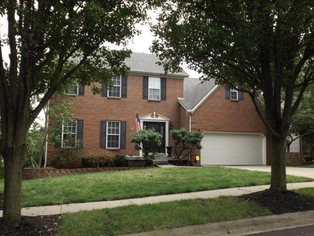 916 Andover Woods Lane, Lexington, KY 40509 (MLS #1821827) :: Nick Ratliff Realty Team