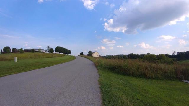 56 River Run Drive, Lancaster, KY 40444 (MLS #1823697) :: The Lane Team