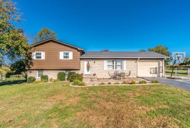139 Mountain View Drive, Berea, KY 40403 (MLS #1824201) :: Nick Ratliff Realty Team